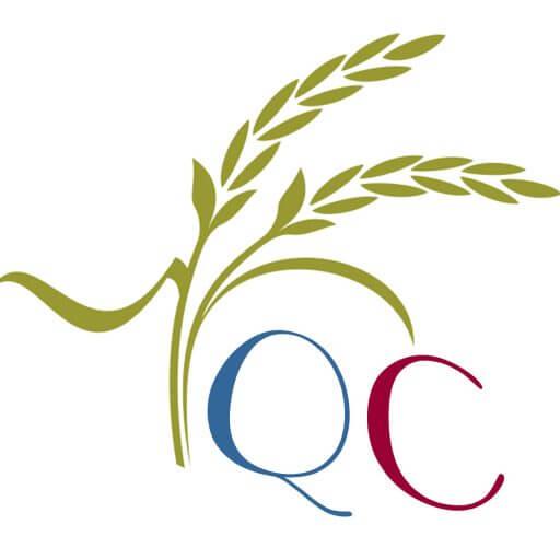logo quỳnh chi